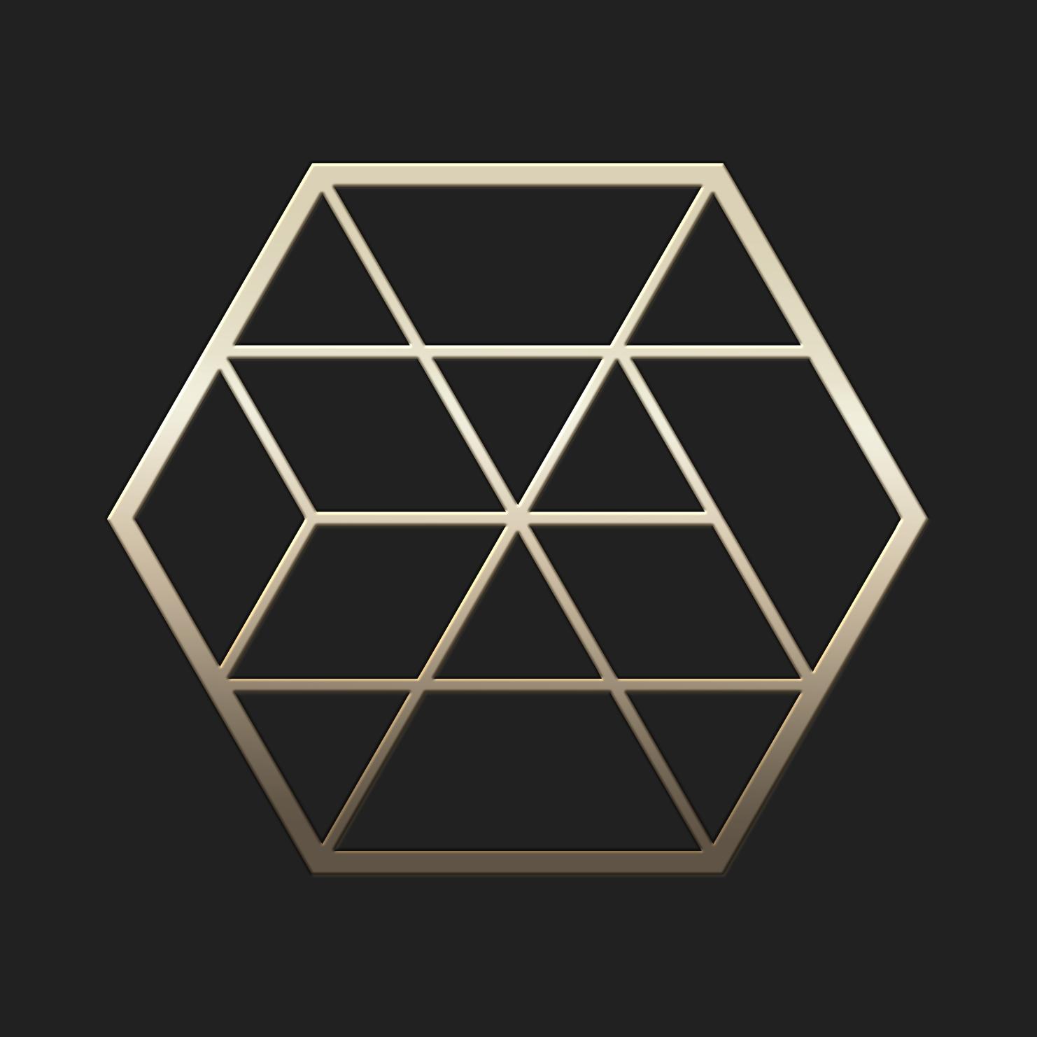 exagono-design-and-concept Logo